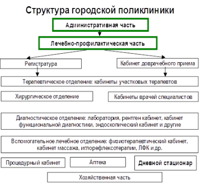 должностная инструкция врача пульмонолога поликлиники - фото 5