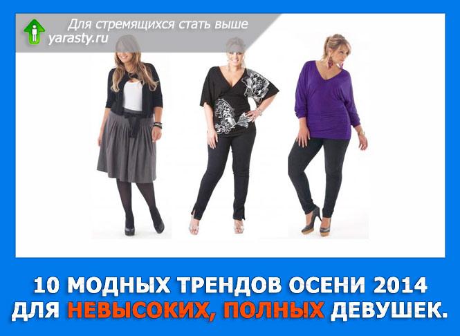 Женская Одежда Для Невысоких